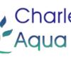 Charlestown Swimming Pool